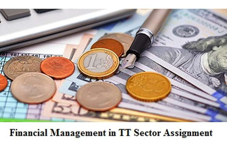 Financial Management in TT Sector Assignment