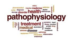 NURBN2012 Nursing Practice Pathophysiology Assignment Help