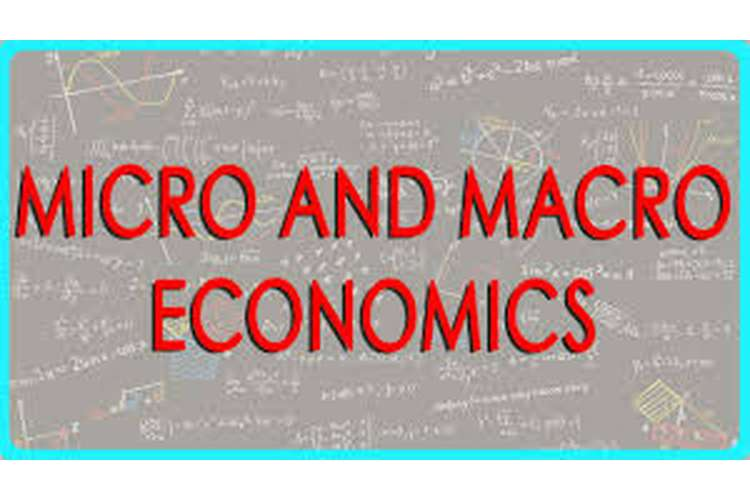 BACC113 Fundamental Micro and Macro Economics Assignment Help