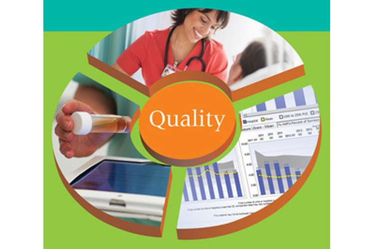 400777 Leadership for Quality & Safety Nursing Assignment