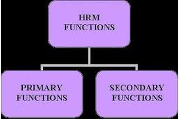 Unit 18 Function of Human Resource Management Assignment