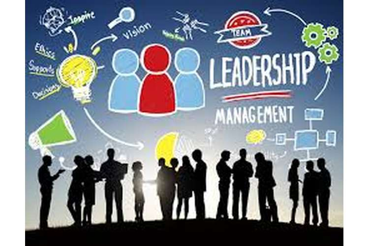 BSBWOR502 Diploma in Leadership and Management plan