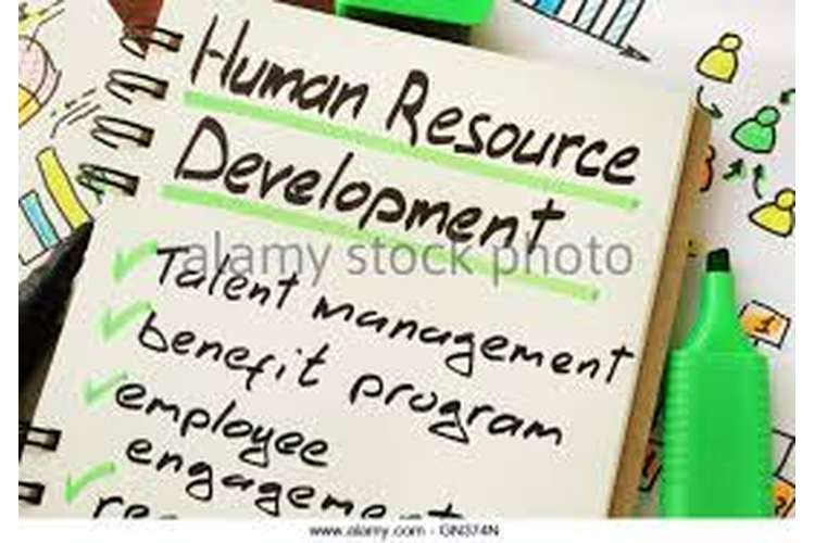 Unit 3 Human Resources Development Assignment