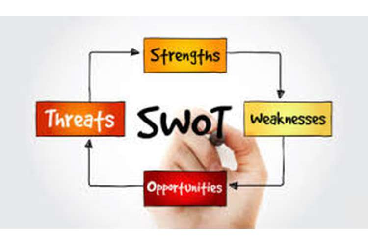 SWOT and PESTLE Analysis Assignment