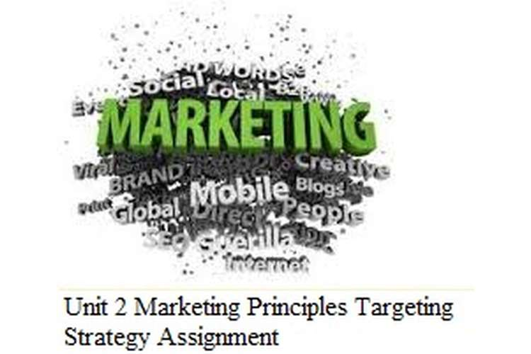 Unit 2 Marketing Principles Targeting Strategy Assignment
