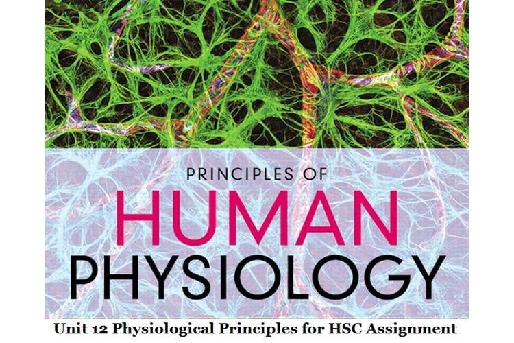 Unit 12 Physiological Principles for HSC Assignment