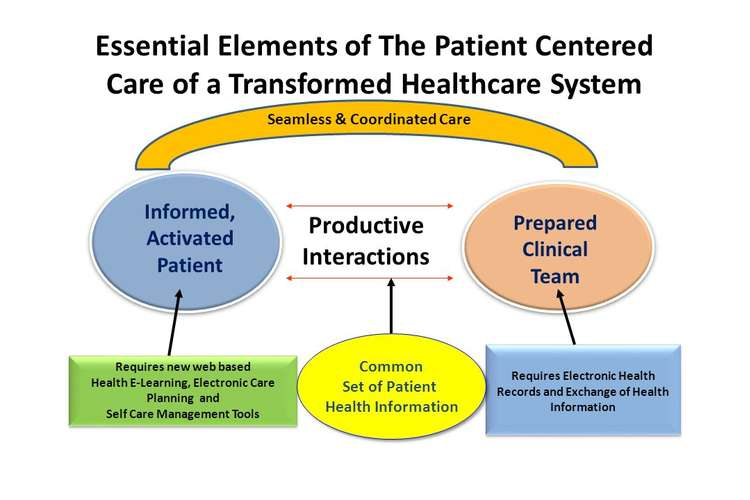 HTH325 Health Care Delivery Systems Assignment