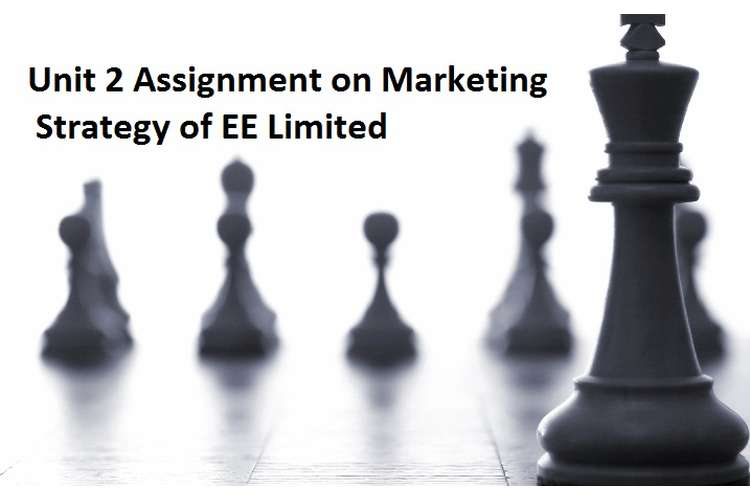 Unit 2 Assignment marketing strategy EE limited