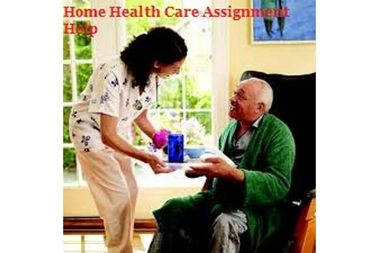 Home Health Care Assignment Help
