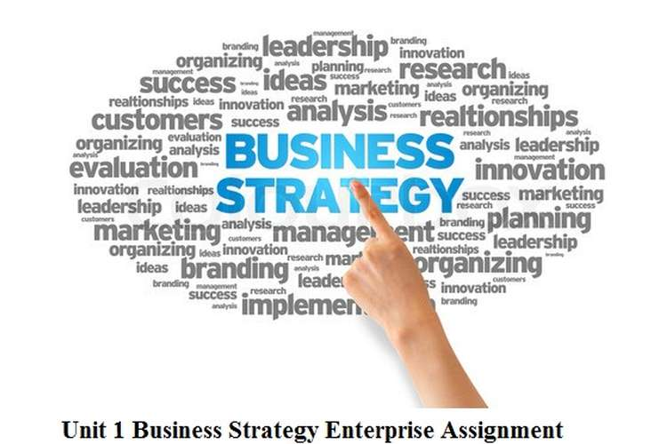 Unit 1 Business Strategy Enterprise Assignment
