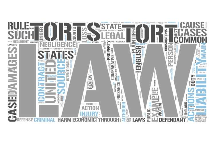MGMT1601 Tort Law Assignment Solution