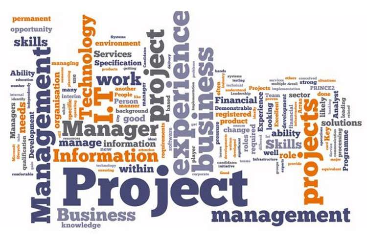 CIS8010 Information Systems Project Management Assignment Help