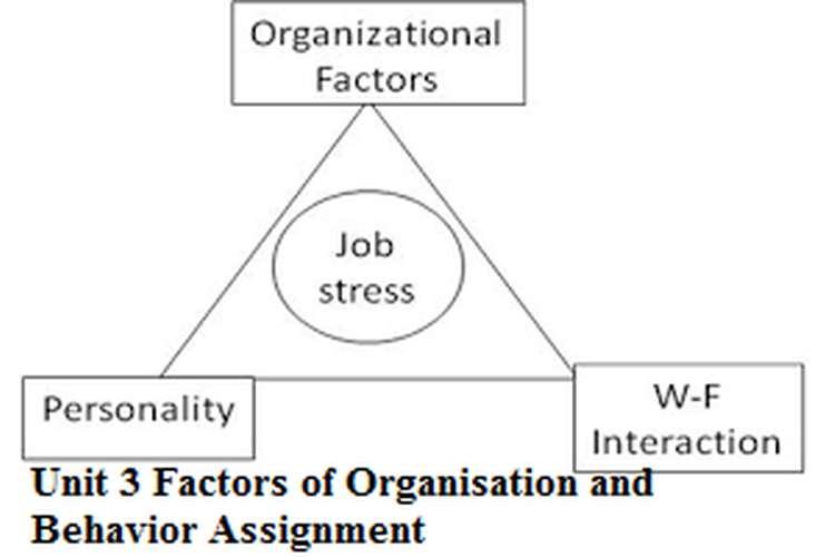 Unit 3 Factors of Organisation and Behavior Assignment