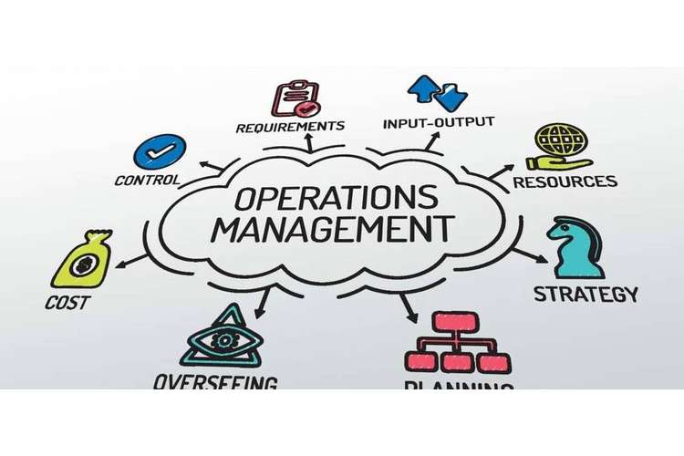 Managing Business Operations Oz Assignments