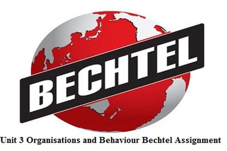 Unit 3 Organisations Behaviour Bechtel Assignment