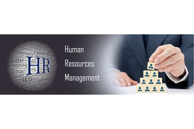 HRM502 Human Resource Management Assignment Help