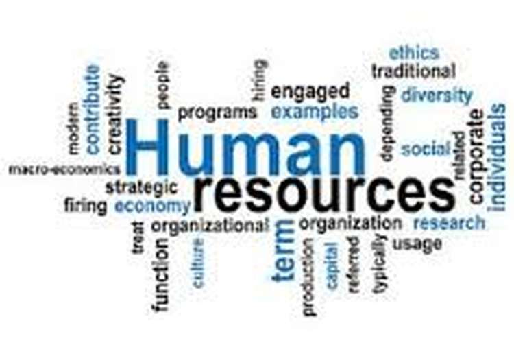 Unit 3 Human Resource Management Planning Assignment