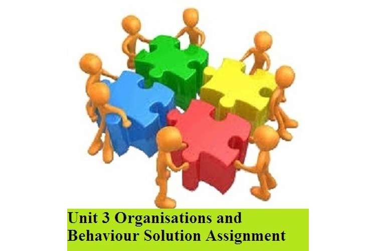 Organisations and Behaviour Solution Assignment