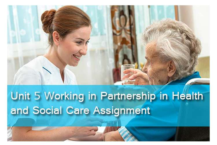 Unit 5 Working Partnership Health Social Care Assignment