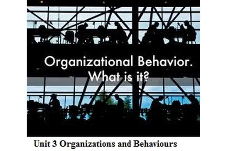 Unit 3 Organizations and Behaviours Motivational theories Assignment
