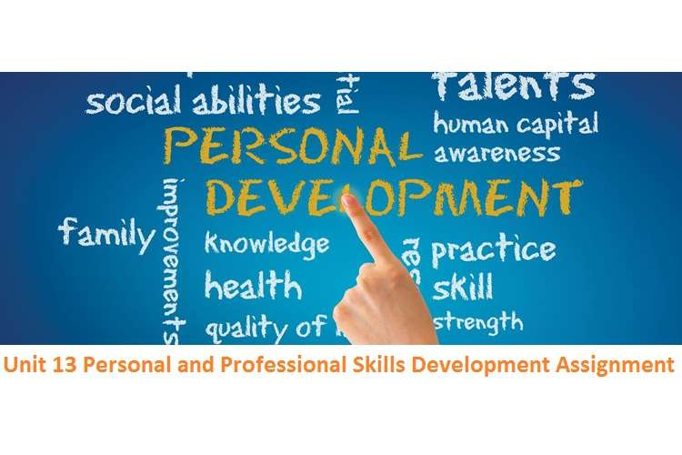 Unit 13 Personal and Professional Skills Development Assignment