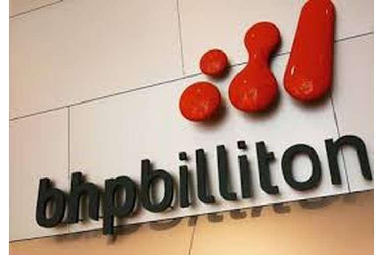 Report BHP Billiton Assignment Help