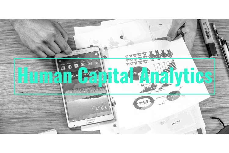 HRM80015 Human Capital Analytics