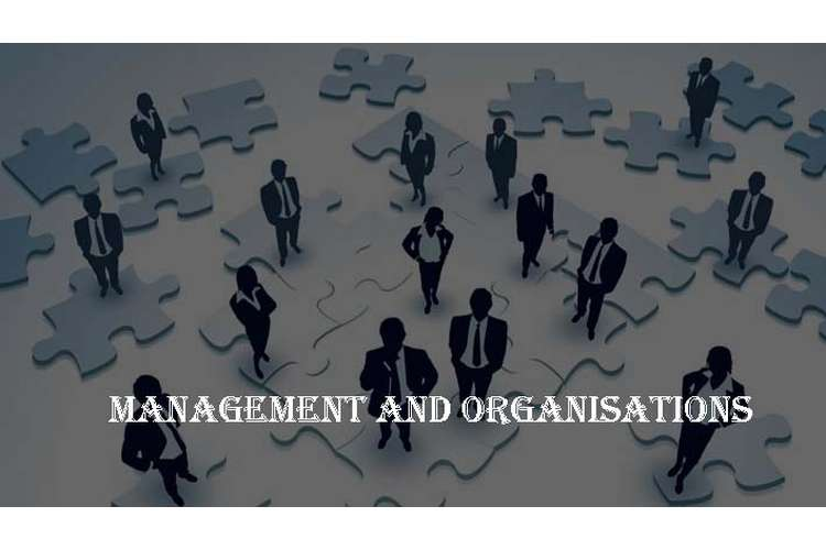 HI6005 Management and Organisations in Global Environment Assignment