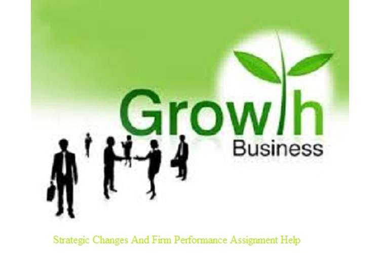 Strategic Changes And Firm Performance Assignment Help