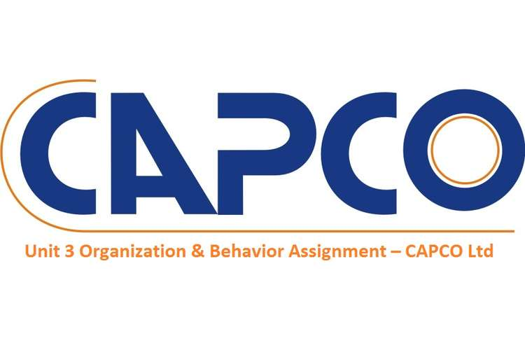 Unit 3 Organization & Behavior Assignment – CAPCO Ltd