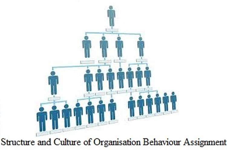 Structure and Culture of Organisation Behaviour Assignment