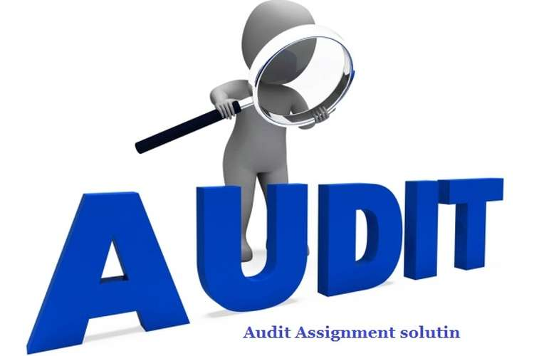 Auditing Assignment Solution