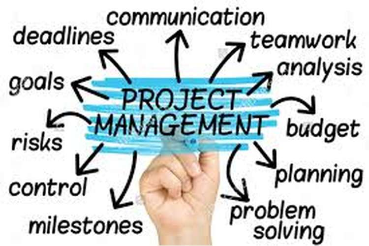 Project Management and Communication Plan Oz Assignments