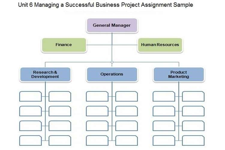 Unit 6 Managing Successful Business Project Assignment Sample