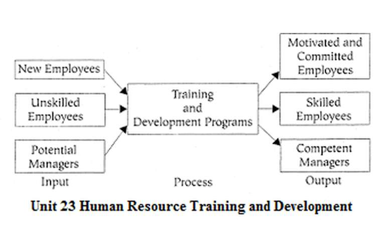Unit 23 Human Resource Training and Development Assignment