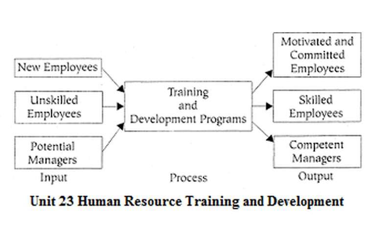unit 23 human resources development