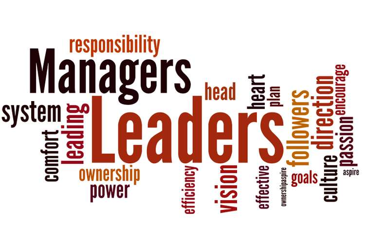 Leadership and Management Oz Assignments