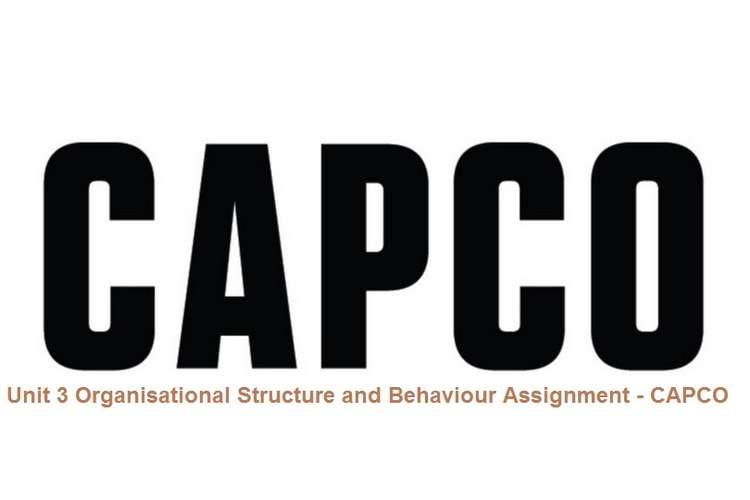 Unit 3 Organisational Structure and Behaviour Assignment - CAPCO