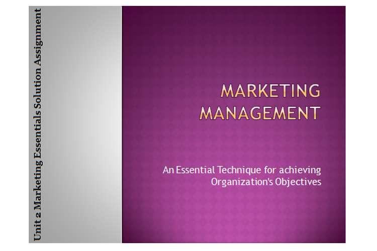 Unit 2 Marketing Essentials Solution Assignment