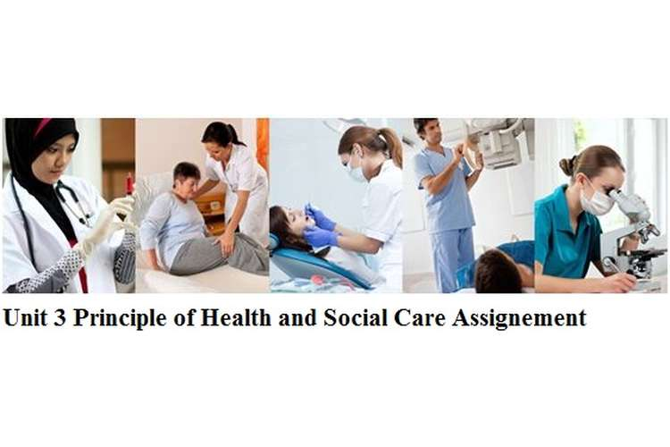 Unit 3 Principle of Health and Social Care Assignment