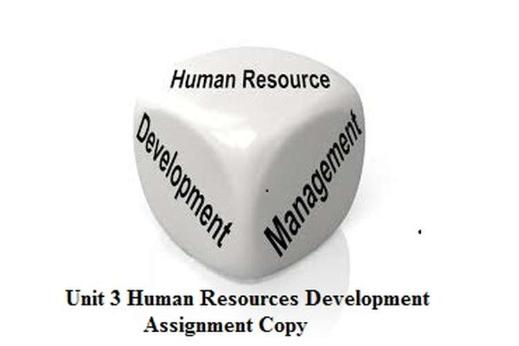 Unit 3 Human Resources Development Assignment Copy