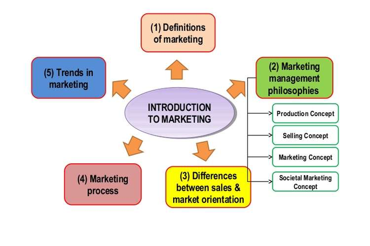 MKT410 Introduction to Marketing Assignment