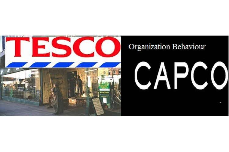 Unit 3 Organization and Behaviour Assignment CAPCO & Tesco