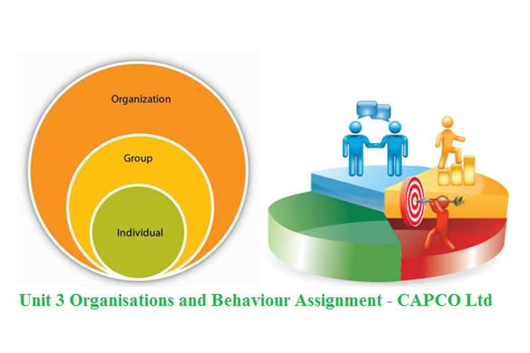 Unit 3 Organisations and Behaviour Assignment - CAPCO Ltd