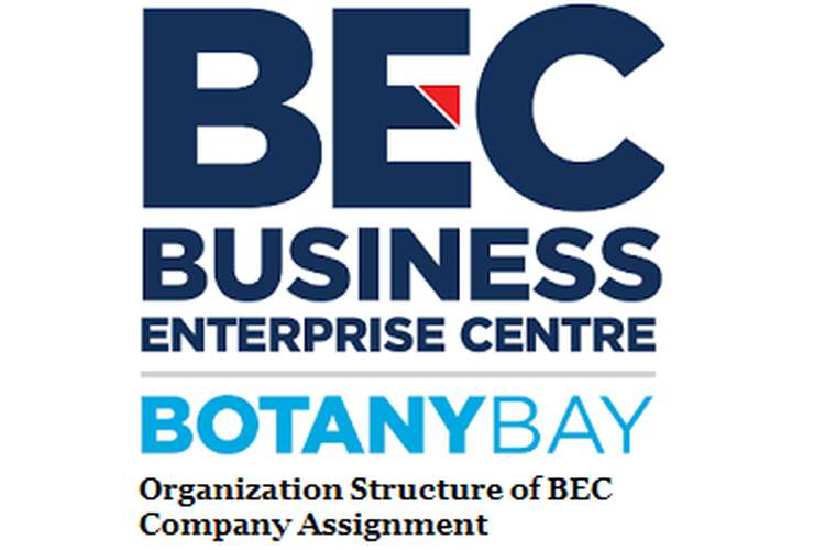 Organization Structure BEC Company Assignment