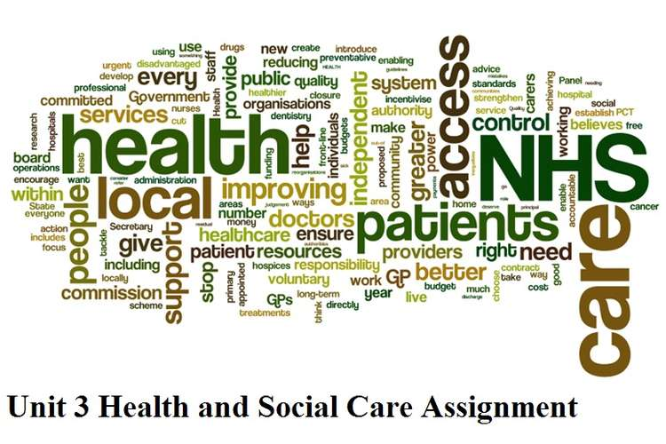 Unit 3 Health and Social Care Assignment