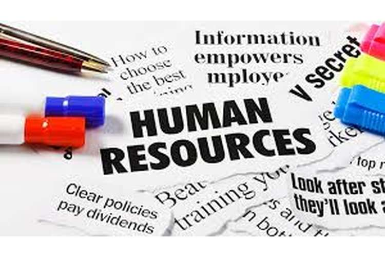 Unit 3 Human Resource Management Assignment Sample