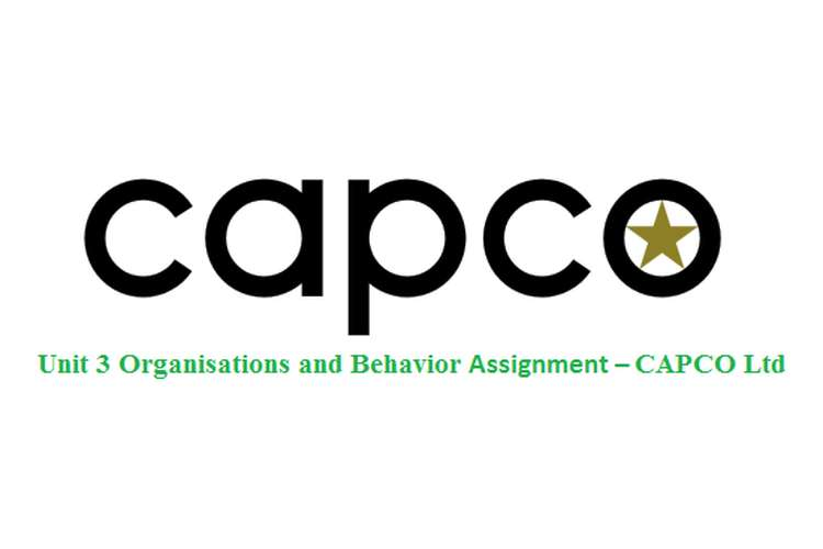 Unit 3 Organisations and Behavior Assignment – CAPCO Ltd