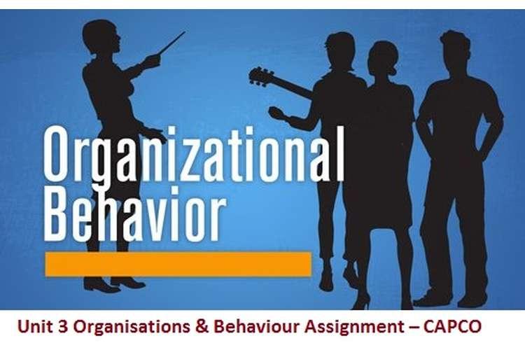 Unit 3 Organisations & Behaviour Assignment – CAPCO