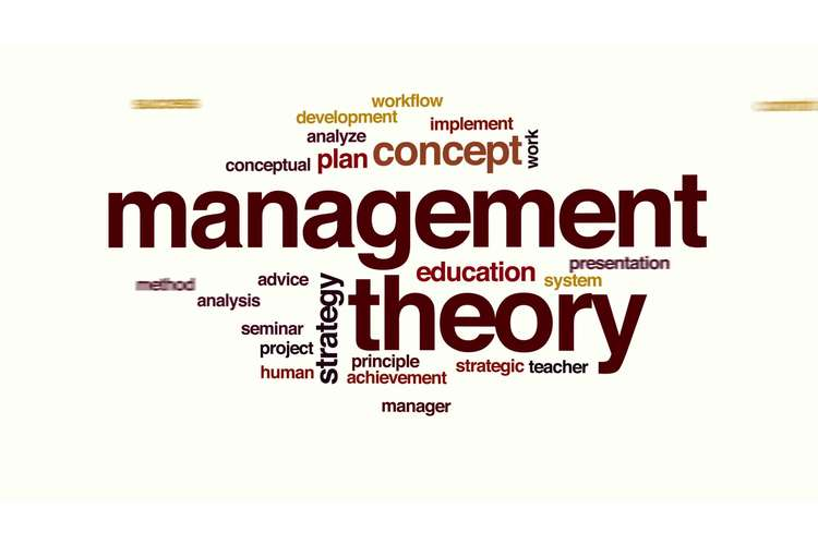 Management Theory Oz Assignment Solution
